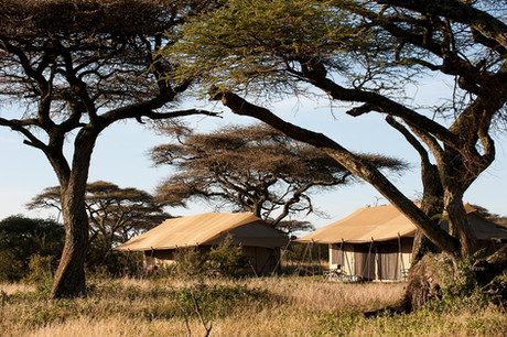 Mara Under Canvas Tented Camp Outside View Tent