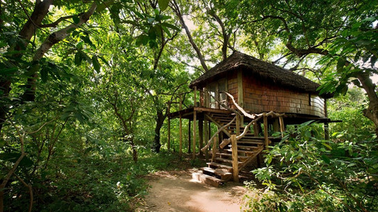 Lake Manyara Tree Lodge Outside View