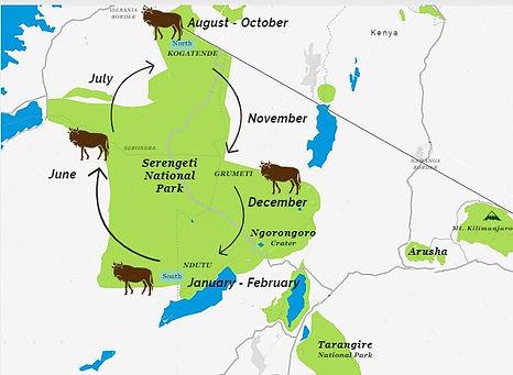 Wildebeest Migration.jpeg