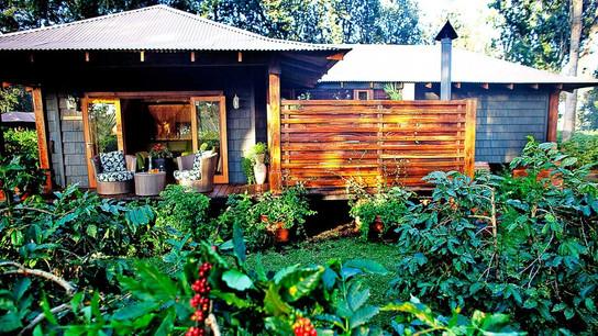 Arusha Coffee Lodge Room View