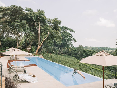Gibb's Farm Swimming Pool