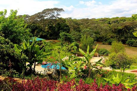 Endoro Lodge Garden