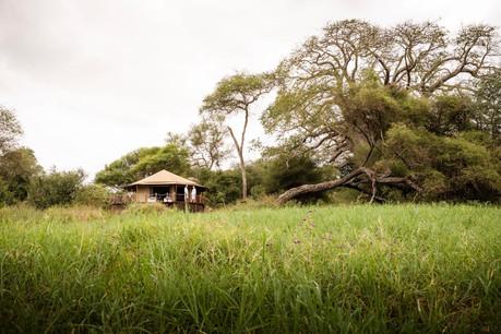 Sanctuary Swala Tarangire Camp - Tent View