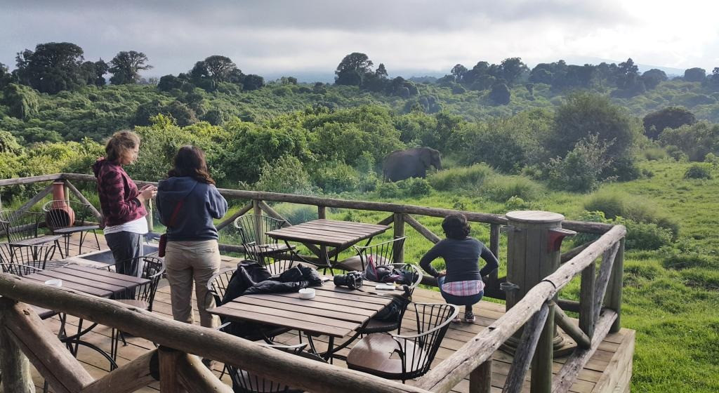 Rhino Lodge View from Lodge