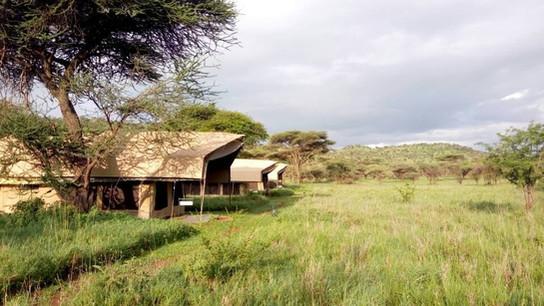 Serengeti Osupuko Camp View