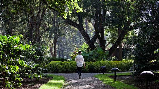 Arusha Coffee Lodge Garden
