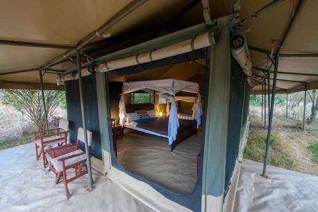 Acacia Migration Camp Tent