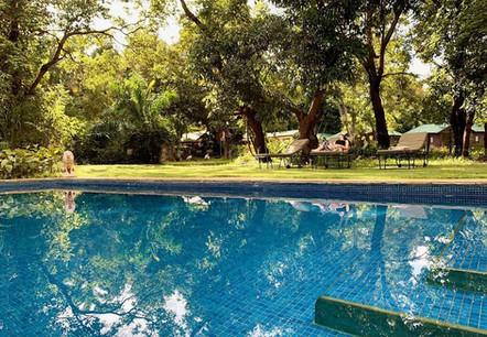Mount Meru Game Lodge Swimming Pool