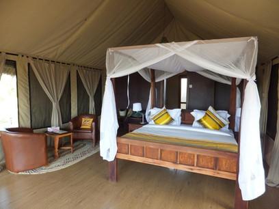 Tarangire Simba Lodge Room