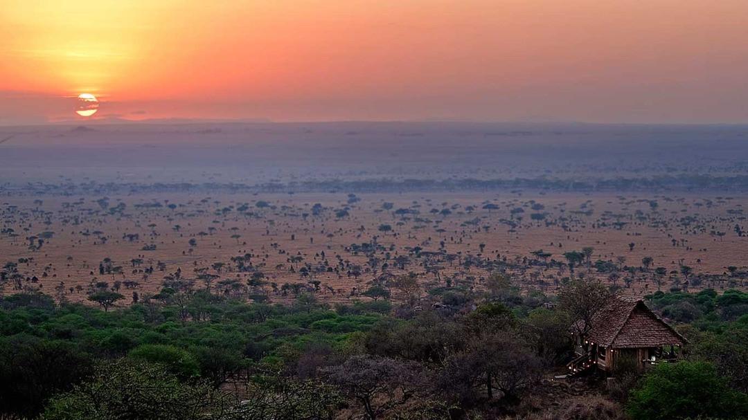 Serengeti Pioneer Camp View of Serengeti