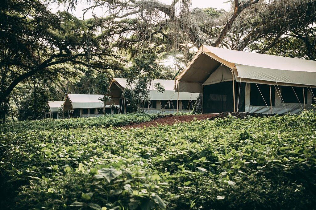 Ngorongoro Tortilis Camp Outside Tent