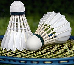 badminton-1428047__340.jpg