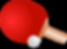 ping-pong-155949_640.png