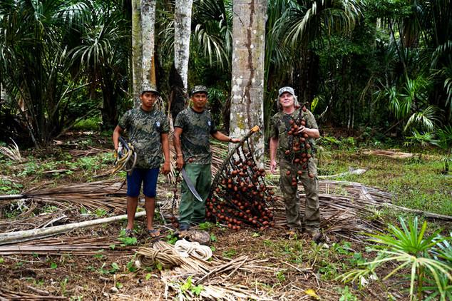 Petr se svými lidmi během sklizně plodů palmy Aguaje