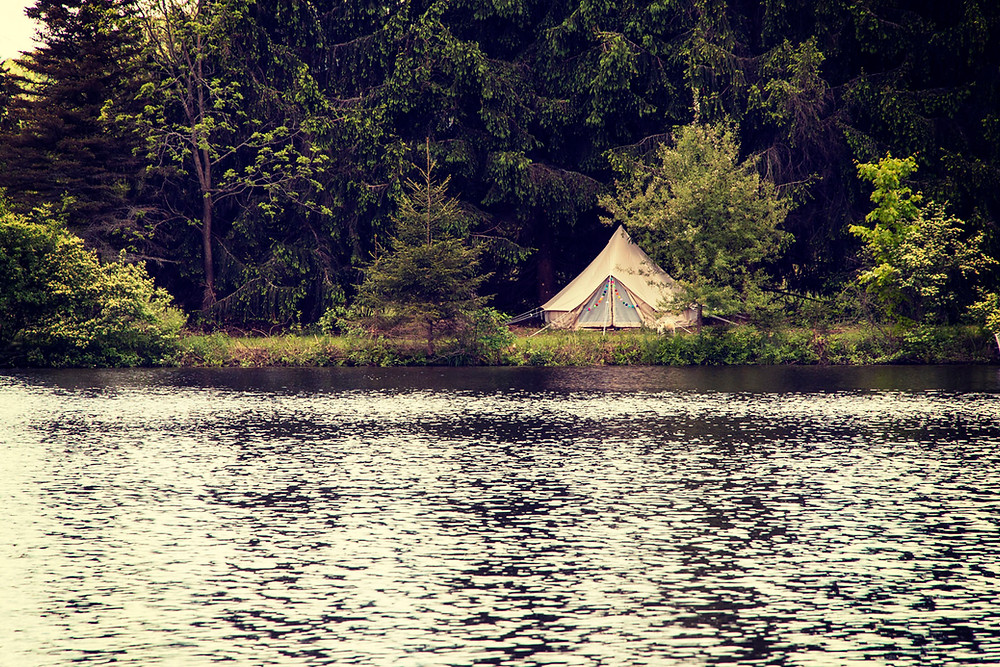 Tent nestled amongst the pond