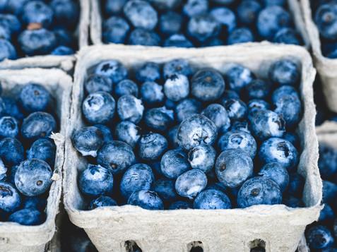 Bluberries at Underhill_1.jpg