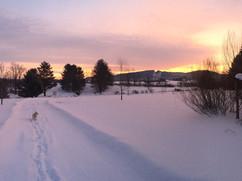 Winter_Underhill_Trail_Stella.jpg