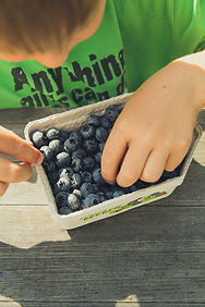 Blueberry_Pick at Underhill.1.jpg