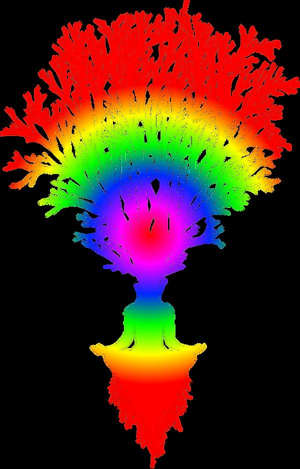 Bioenergetica milano, grounding, albero