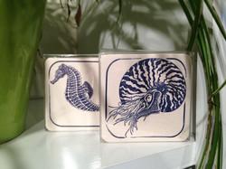 Aquatic Coasters Dandy Lion Press