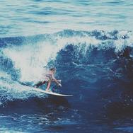 Sugar Surf Cape Cod Wellfleet, MA