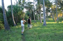 Walking in the coconut plantation