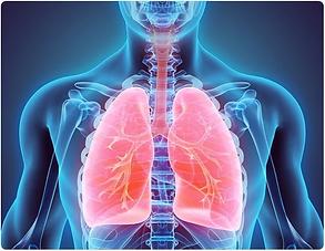 COPD.webp