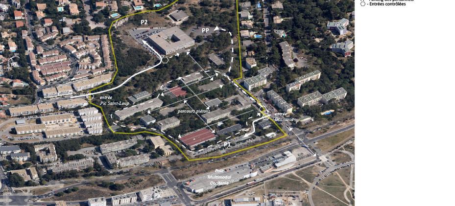 UM2 Montpellier Université