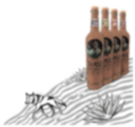 Tio Pesca Mezcal Bottles