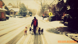 Happy Snow Day.jpg