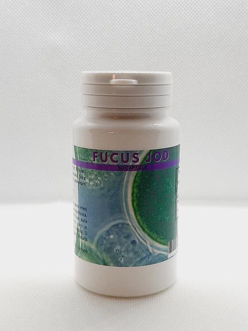 Fucus jod