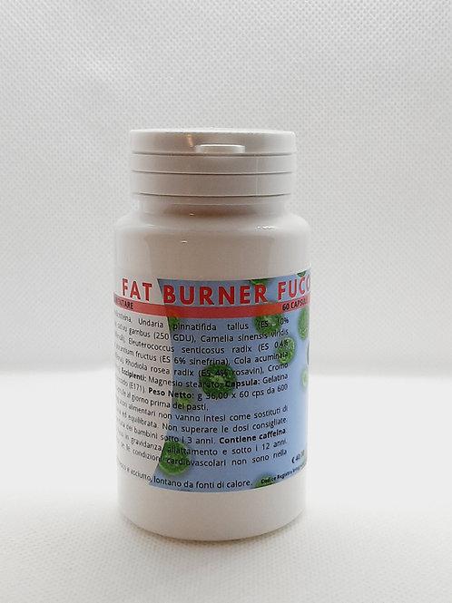Fat Burner 2