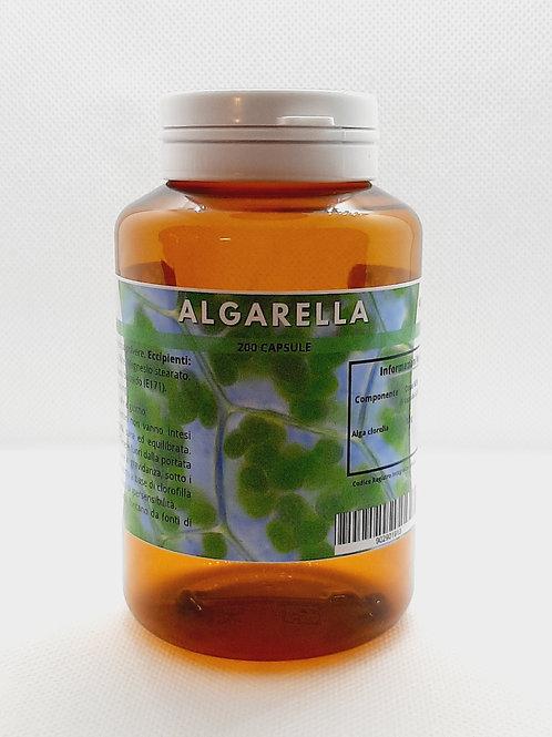 Algarella
