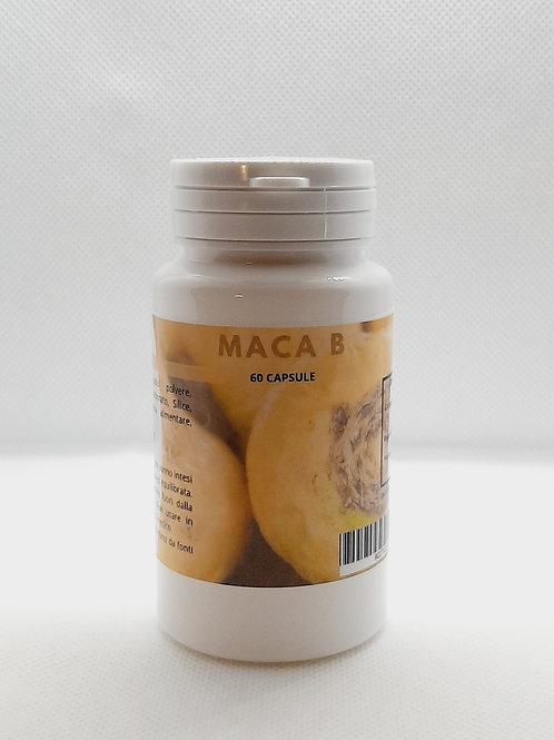 Maca B