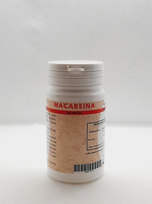 Macareina