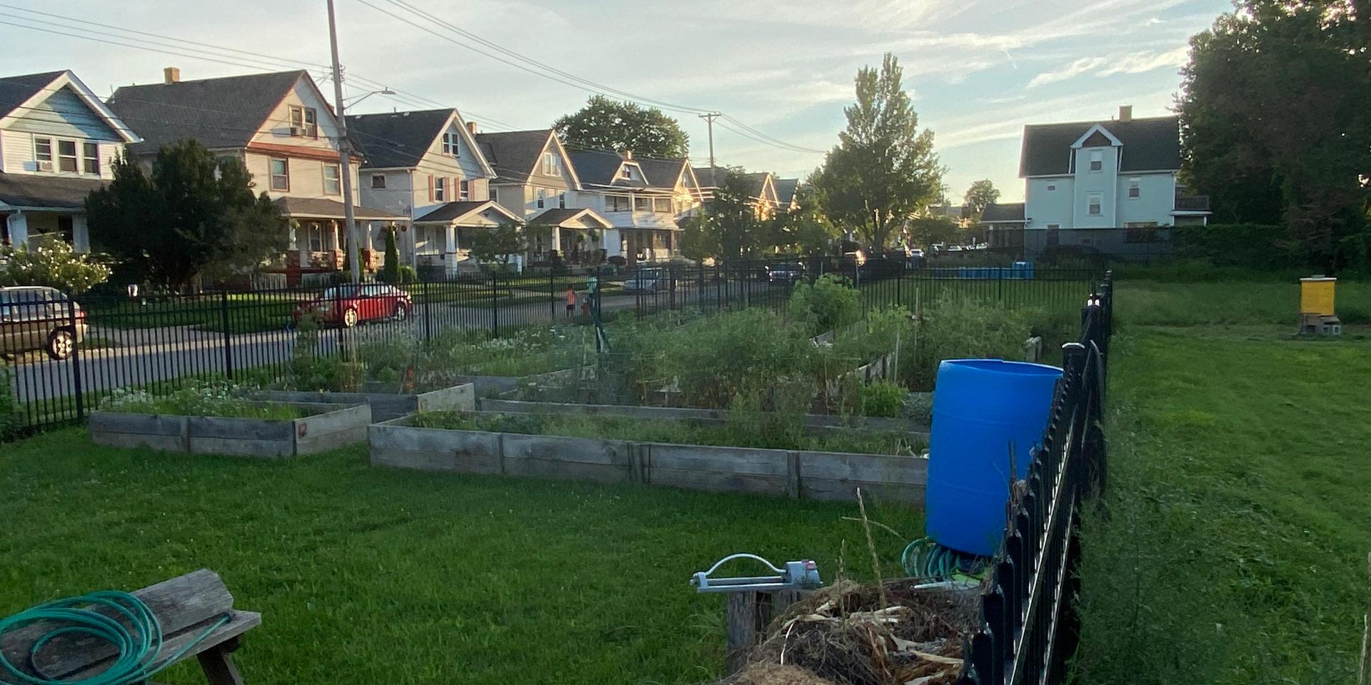 Our Community Garden.