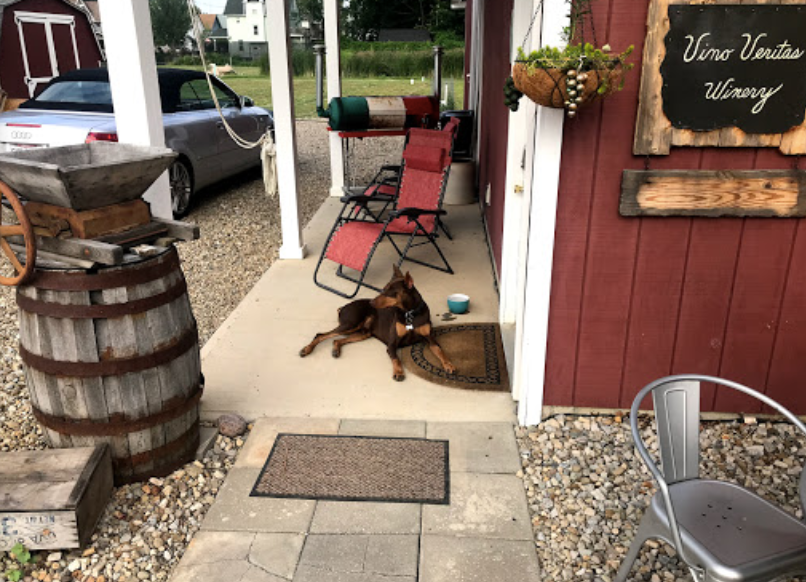 Vino is awaiting your arrival!