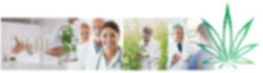 CC-Pharma_2.jpg