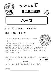 ミニミニ講座チラシ・5月.jpg