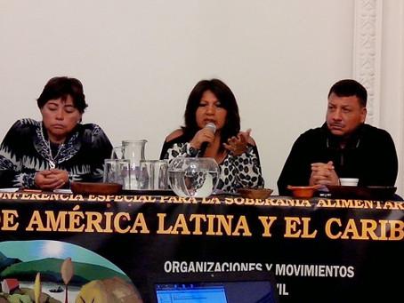 DECLARACION DE LA CONSULTA DE LA SOCIEDAD CIVIL HACIA LA 33ª CONFERENCIA REGIONAL DE FAO