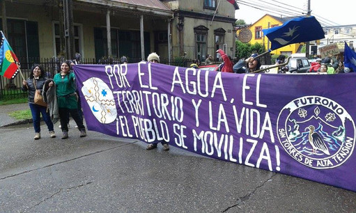 Marcha Valdivia 4.jpg