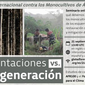Seminario online: Día Internacional contra los Monocultivos de Árboles