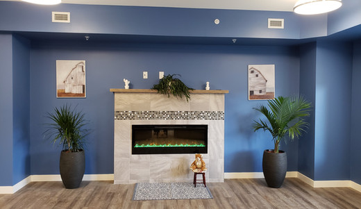 Ironwood Blue fireplace.jpg