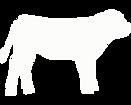 calf white.png
