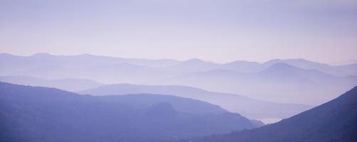 'Into the Haze'