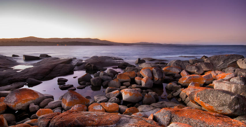 'Bay of Fires'