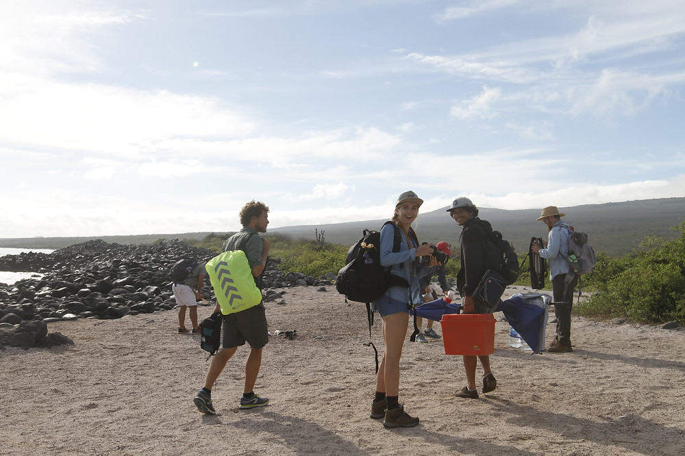 The team sets out to Isla Lobos to find some Iguanas