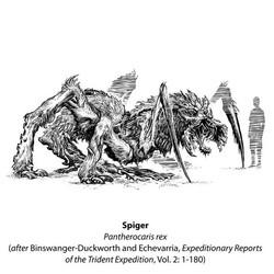 Spiger book etching