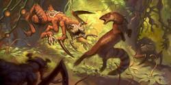 Henders Rat vs. Mongoose