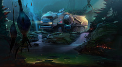 Rover in the Jungle